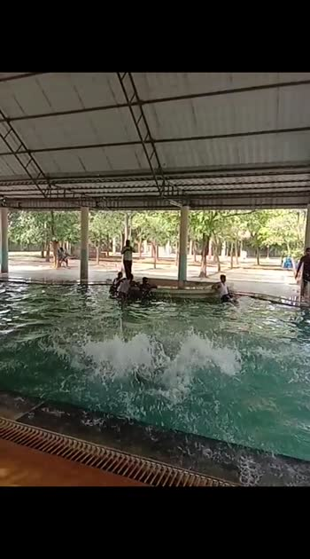 #challengeaccepted @swimming pool