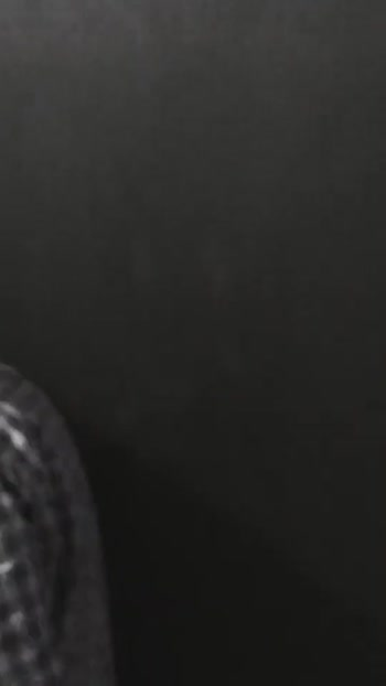 #arjunreddy #roposostar #roposorisingstar #thelookingglassgiveaway #ashwin1917 #cbe