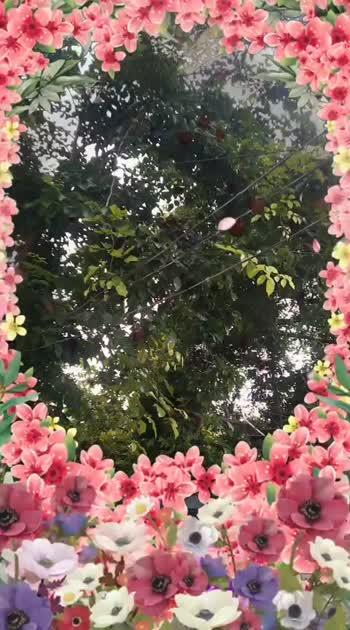 ##naturephotography #