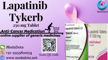 Buy Indian Lapatinib brand as it is available at lower also discounted rate with MedsDots.Net: The True Indian Pharmacy of genuine oncology medications including original Lapatinib availing with a guarantee of global delivery. Generic Lapatinib alternatives available under different trade names such as Tykerb other known brands are there used to sell under Lapatinib generics which is used to treat a certain type of breast cancer (HER2-Positive). That works by slowing or stopping the growth of cancer cells. Get Indian targeted cancer medicines or Lapatinib at your doorsteps whether you are in China, Romania, Hungary, Malaysia, Singapore, Ukraine, USA, Cambodia, UAE, Oman, Venezuela, Australia, Hong Kong, Belarus, Latvia, Taiwan, New Zealand, Fiji, Laos, Thailand, Philippines, Vietnam, UK and many other countries. If you want to buy Herduo 250mg Tablets: Tykerb 250mg Tablets then contact us by Call/Whatsapp/Viber: +91-9953810074, QQ: 3232648085, WeChat: medsdots, or mail: medsdotss@gmail.com