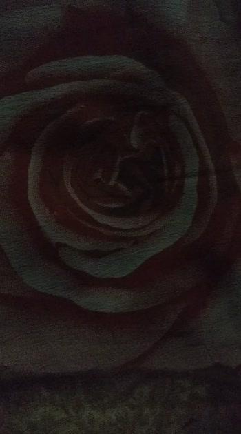 tane apu gulab nu full🌹🌹🌹🌹🌹🌻🌼🌼🌷#rakeshbarot #rakeshhankareofficial #rakesh_barot #rakesh_barot_new_gujarati_song_status #roposostar #roposostars #ropo-beauty