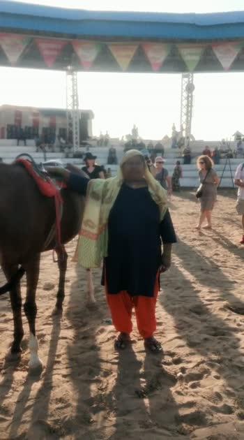 red horse##pushkar horse field