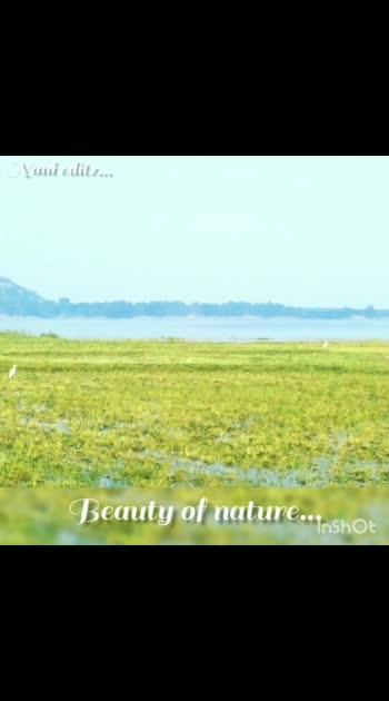 beauty of nature 😍💙#nature #naturepgotography #naturelover #natureworld_photography #nature_lovers #naturepics #natureswonder