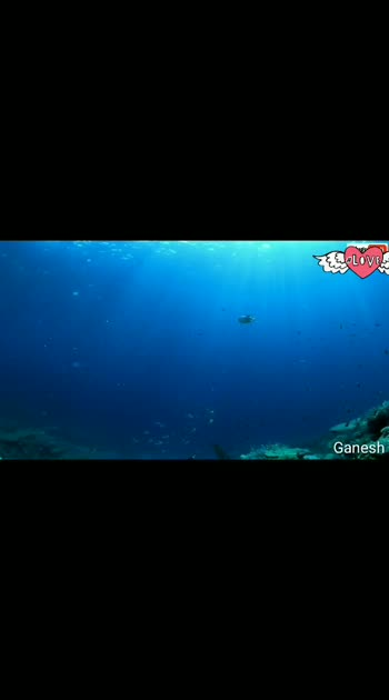 Life in The Deep Sea#Exploring Ocean#Documentary In Telugu#Facts#....