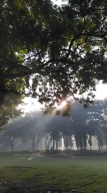 Amazing natural view 😍😍👌👌 #roposostar #roposobeauty #risingstars #risingstarschannel #roposofeaturedme #roposocamera #roposobeatschannel #roposowowchannel #roposonaturelove #roposo-dance #roposoinfluencer #roposobloggerawards #weatherlove #naturepgotography #photooftheday #photooftheday #photographer #garden_explorers #garden #gujjukigang #gujrat #rajkot_gujarat #rajkot_instagram #roposobeauty #roposostarchannel