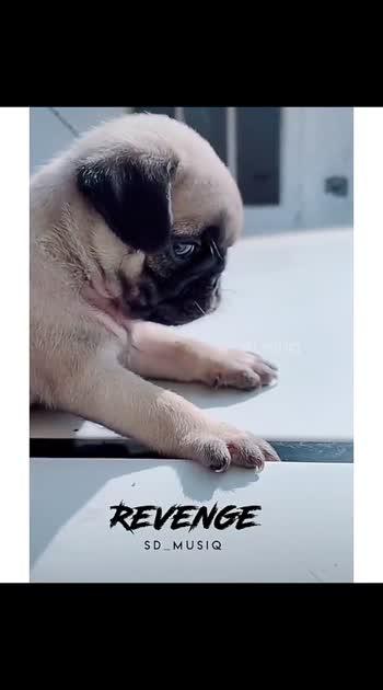 #revenge