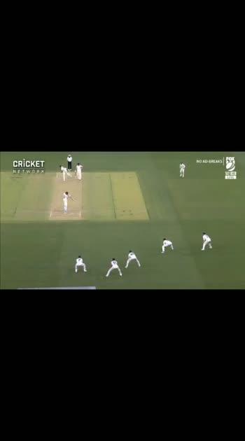 #cricket nice cricket