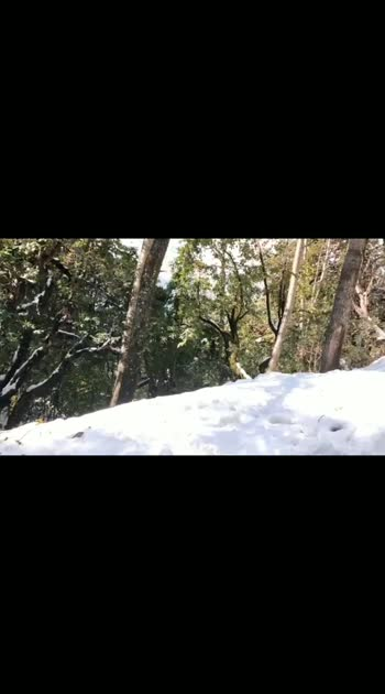 #uttarakhand_diariesss  #nature_lovers  #pahadiswag #snowfall_ #beauty_of_nature #please visit uttarakhand  #thanksroposo #thanks_all_guys