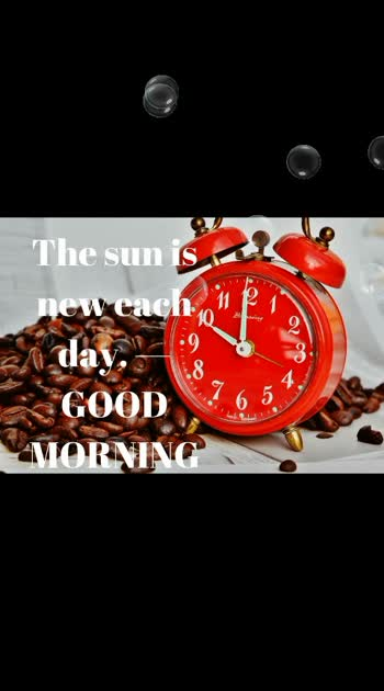 #newmorning #newday  #newyear