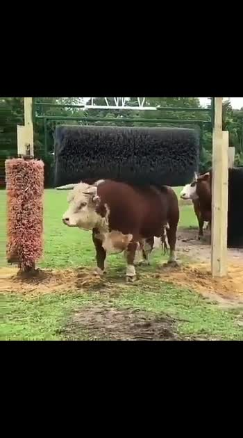Caption this😂👇👇  Tag someone who would love to see this  _  Share your thoughts on this   ▪️Turn On Post Notifications To See More   𝗙𝗼𝗹𝗹𝗼𝘄𝗳𝗼𝗿𝗺𝗼𝗿𝗲  ⠀ ⠀ ⠀  _  This content is for entratainment/news purposes only, if the owner would like the video(s)/picture(s) taken down or if credit was not given please DM us and we will sort it out as soon as possible. _   #electroluc  #smartgadget  #invention  #cool  #gadget  #gadgets  #insider  #techinsider  #techwear  #technics  #Electronics  #technology  #tech  #electronic  #techie  #techies #viralvideo #diy