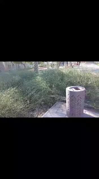 khipda in Dubai  park #dubai