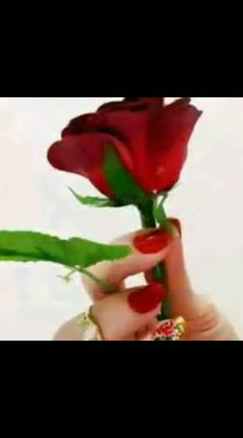 #lovestatus