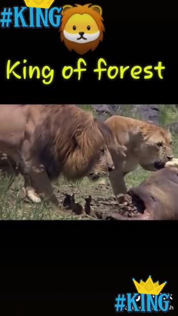 King 🤨♨️ #king #king