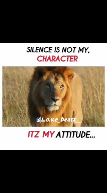 #attitude #lions