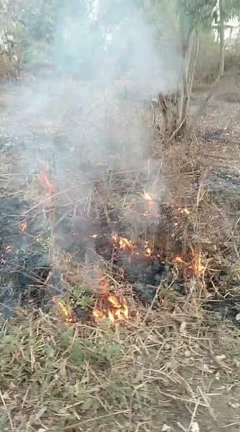 iam fire iam the fire