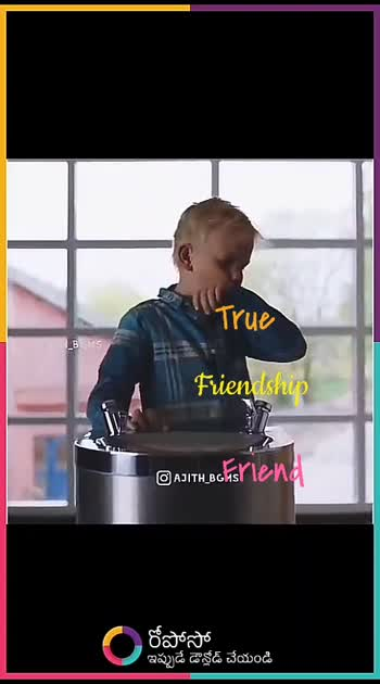 true true friendship