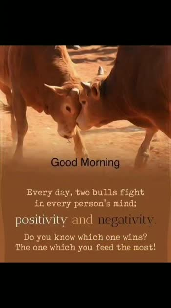#positivity #negativity #goodmorning