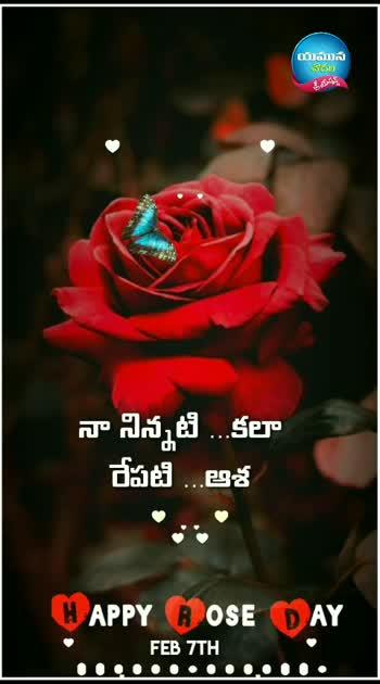 #roposogoodnight #roposogoodnightquotes #happy valentines day#roposohappy-roseday#roposo-yamuna-chowdari-creations #roposowishes #roposotelugu