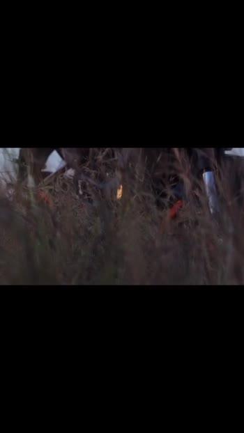 #duke200 #ktm #ktmindia #dukelover #duke #dukeofficial #dukestatus