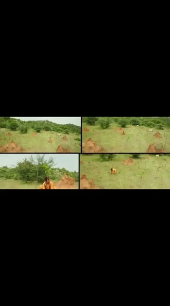#sunil #newtelugu #movies