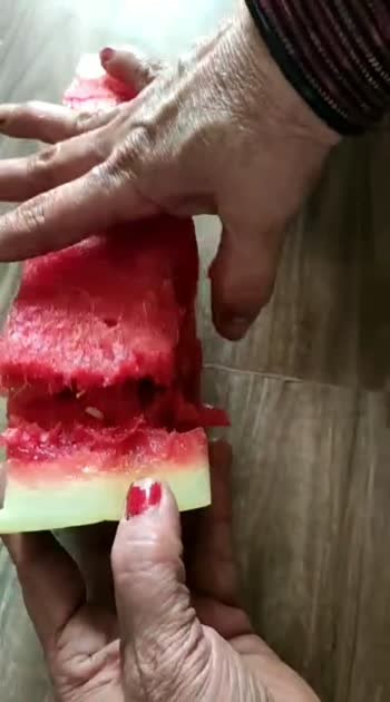 watermelon danger