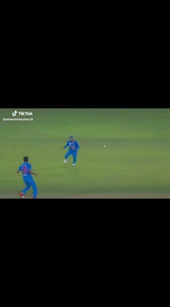# cricket cricket India