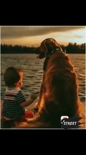##roposo-beats ##Dog's lover#