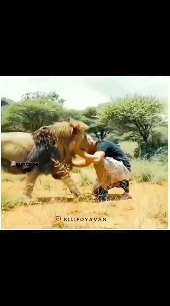 #wildlife  #lover....