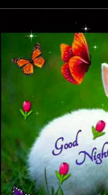 #goodnight #roposowisheschannel #with #cute #rabbitlove