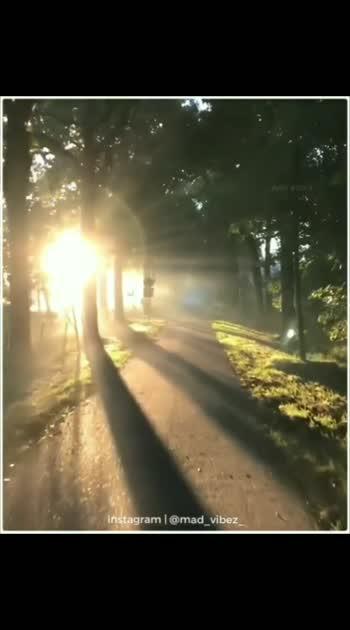 #naturelove #morning_vibes #beatschannel