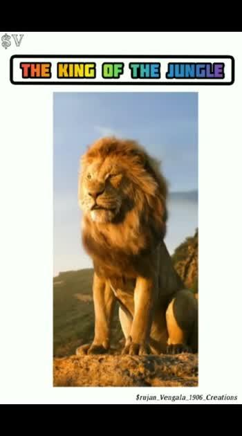 king... always.. King
