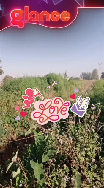 garden#####