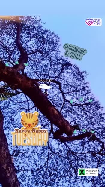 #designyournailsbyisha #quarantineandchill #quarantine #stayhome #staysafe #fightagainstcoronavirus #happytuesday #beautifuldestinations #closetonature #naturepgotography #naturelover #nailartlover #bblogger #blogger #youtuber #roposoblogger #soroposo
