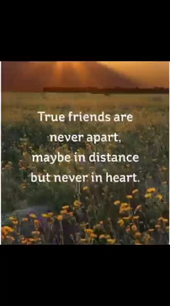 #friendshipquotes