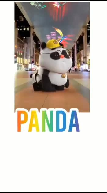 panda#panda