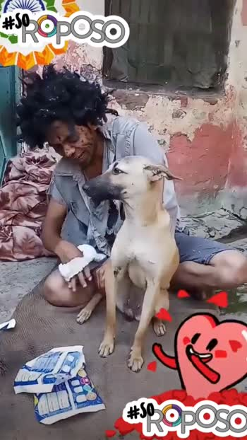 Doggie ko baby diaper phna diya bhikari me... #mamypokopants #babystatusvideo #funnyvideo #comedyvideo #hahatvchannel #wowchannel #featureme #roposo #fyp #soroposo #soroposo