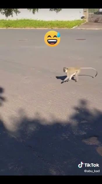 very very funny video