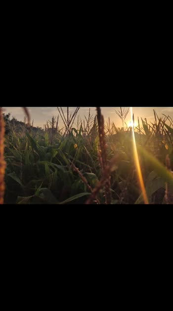 #slowmotion #telugu-roposo #oneplus #videography