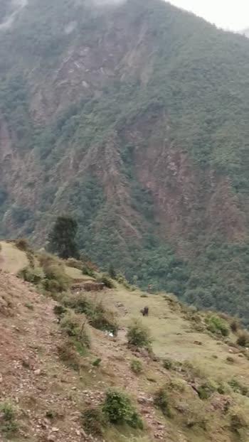 amazing view#hillstation #pahadihaihum