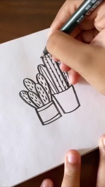 Cacti 🌵 #cactus #plant #art