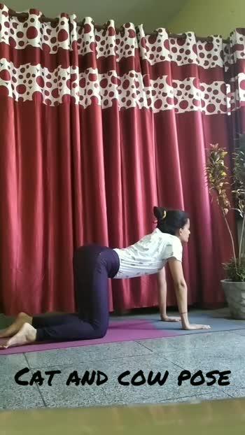 #catandcowpose #yogainspiration #yogalove #backbending #stretching #MyLifeMyYoga#yogagirl #fitnessgoal #fitnessfreak #fitness #fitnessfreak #fitnessinspiration #roposo #roposostar #roposocontest #shoulder #yoga #MyLifeMyYoga