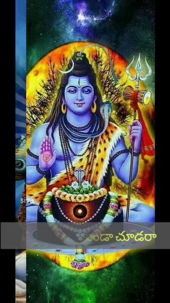 #omnamahshivaya #shivayanamaha #shamboshankara #haraharamahadev