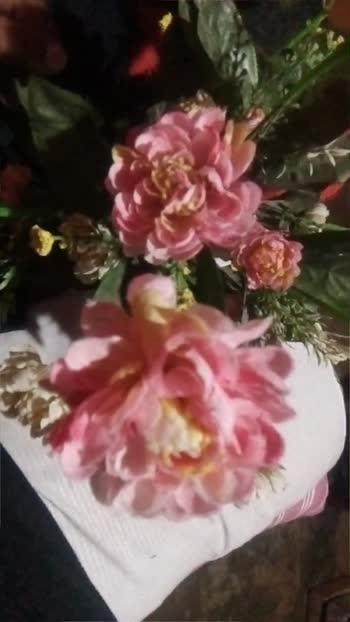 #rose #beautiful #rose #rose #rose