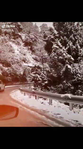 #snowing#snowfall_#snowflakes#shimladiaries #shimlatrip #kufri#shimlahills