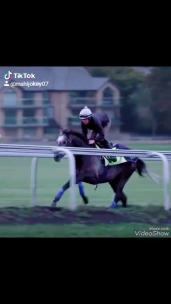 Mahi jockey 07