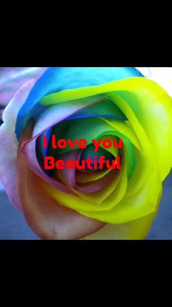 beautiful beautiful