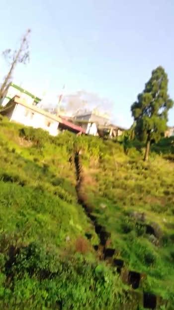 #walk #evening walk#sunnyday#sunshine