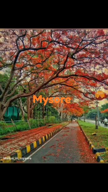 mysore#mysore