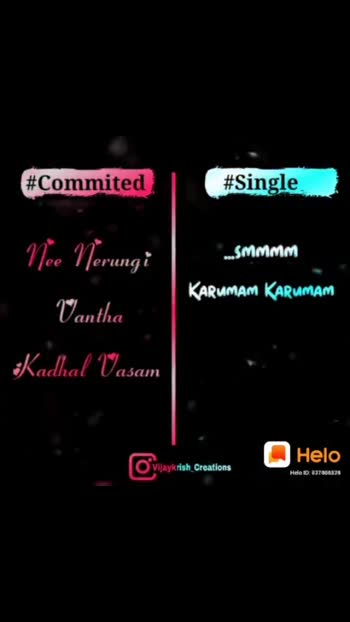 COMMITED  &  SINGLE