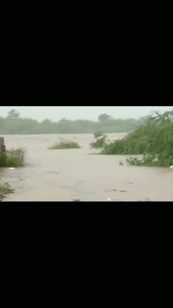 #gujarat #floods #saurashtra #region #rajkot #amreli #junagadh #bhavnagar #morbi #trendingvideo #roposostar #monsoonmasti